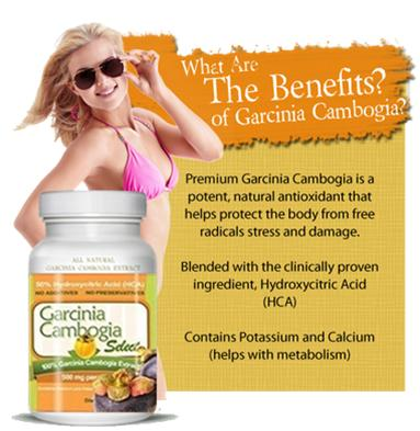 Garcinia Cambogia in New Zealand